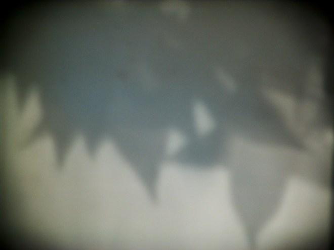 765bd-dsc04302
